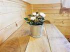 Нощувка за 16 или 20 човека в делнични дни в къщи Кандафери 1 и 2 в типичен еленски архитектурен стил - с. Мийковци, край Елена, снимка 17