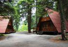 Май в Боровец! Нощувка в напълно оборудвана къща за до 4 човека във Вилни селища Ягода и Малина, снимка 6
