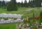 Релакс в Родопите! 1, 4 или 5 нощувки със закуски и вечери за ДВАМА + басейн и релакс пакет в апарт-хотел Форест Нук, Пампорово, снимка 16