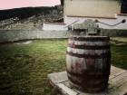 Нощувка край Асеновград във вили Вълчаница, всяка за 8 човека с механа и камина - с. Добростан