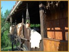 Нощувка за дo 12 човека + механа и барбекю с пещ само за 100.00 лв. в Старата Къща край Елена - с. Мийковци, снимка 12