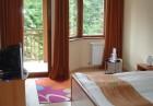 Делнична почивка в  Боровец! Нощувка със закуска за двама, трима или 2-ма с 2 деца + басейн от хотел Айсберг****, снимка 6