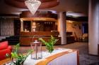 Делник в хотел Здравец Уелнес и СПА**** Велинград.  Нощувка на човек със закуска и вечеря + басейн с минерална вода и СПА
