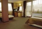 2 или 3 нощувки на човек със закуски и вечери + минерален басейн и парна баня от хотел Жери, Велинград, снимка 9