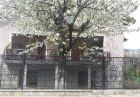 Нощувка на човек само за 19.90 лв. в къща за гости Кюркчиеви, снимка 8