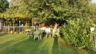 Нощувка за 8, 11 или 19 човека + басейн и механа къща Чучи в Златна Панега