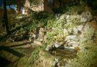 Нощувка за 10 човека + голям и малък басейни, зоокът и детски кът в самостоятелна къща Руен в Троян, снимка 19