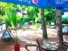 All Inclusive + басейн на ШОК ЦЕНИ в хотел Диана, Златни Пясъци. Дете до 12 г. БЕЗПЛАТНО!!!, снимка 21
