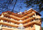 Нощувка на човек със закуска, обяд* и вечеря + минерален басейн, сауна, парна баня или джакузи в хотел Костенец, снимка 2