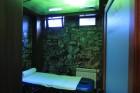 2 нощувки на човек със закуски и вечери + топъл басейн, парна баня и сауна от хотел Русенски Лом, с. Кошов, снимка 18