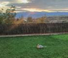 Нощувка за 7+2 човека + трапезария и просторен двор-градина в къща Гикинска край Сандански - с. Джигурово, снимка 14