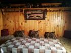 Нощувка за 16 човека + барбекю, механа и детски кът в къщи Вълчаница край Асеновград - с. Добростан, снимка 10