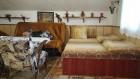 Нощувка за 17 човека + собствена механа в къща Катеричка на брега на язовир Батак, снимка 6