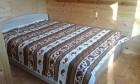 Нощувка за 16 човека + механа в къща Кънтри хаус край Асеновград - с. Добростан, снимка 9