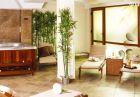 Свети Валентин в Девин. 2 нощувки на човек със закуски и вечери, едната романтична + сауна, парна баня и релакс зона в Хотел Маунтин Бутик, снимка 7
