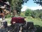 Нощувка за 16 човека + механа с камина в къща Котуци край Елена - с. Буйновци, снимка 6