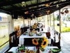 Лято до Луковит! Нощувка на човек със закуска или закуска и вечеря + басейн в Къща за гости Миша, с. Петревене, снимка 4
