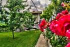 Нощувка за до 11 човека + сезонен басейн, механа, барбекю и просторен двор в къща Крисиели край Кюстендил - с. Горна Брестница, снимка 31