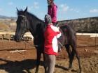 Конна езда и обучение в грижа за конете - 60 мин. забавление за малки и големи от конна база Ласкар, София, снимка 3