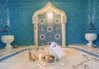 Нощувка на човек със закуска и вечеря + термален СПА център и 2 минерални басейна в Хотел Римска Баня, с. Баня, до Банско, снимка 7