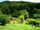 Нощувка за 5 човека + лятно барбекю с навес, голяма градина и детски кът в къща Ломар край Калофер, снимка 8
