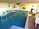 Делник до Костенец! Нощувка на човек на база All Inclusive Light + външен и вътрешен басейн с гореща минерална вода и сауна от хотел Виталис, Пчелински бани, снимка 3