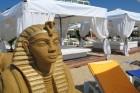 Нощувка на човек на база All Inclusive + басейн и собствен плаж от хотел Бона Вита, Златни пясъци., снимка 26