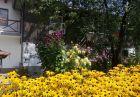 Нощувка за 8 човека + барбекю, китен двор с градина и още удобства в къща Маришница в Априлци, снимка 18