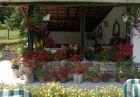 Нощувка за 8 човека + барбекю, китен двор с градина и още удобства в къща Маришница в Априлци, снимка 19