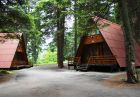 Нощувка в напълно оборудвана къща за до 5 човека + басейн и сауна във Вилни селища Ягода и Малина, Боровец, снимка 18