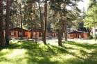 Нощувка за до 4 или 6 човека + механа и веранда с барбекю в бунгала Елхови Лес в Цигов Чарк, снимка 4