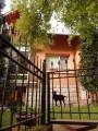 Нощувка за до 8 човека + сезонен басейн, механа и барбекю в Къщата с трите веранди в Берковица, снимка 9