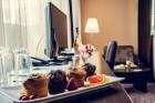 Нощувка на човек със закуска и вечеря + минерален басейн и релакс пакет в хотел Здравец Уелнес и СПА****, Велинград, снимка 32