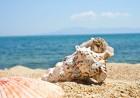Уикенд в Гърция, Кавала, плаж Амолофи. Транспорт + нощувка и закуска на човек от туристическа агенцията Трипс Ту Гоу, снимка 3