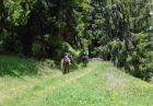Почивка и езда край Чепеларе! Нощувка за един човек с изхранване в Ранчо Диви Родопи в с. Здравец!, снимка 23