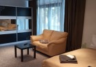 Нощувка в луксозен апартамент със сауна, джакузи и парна баня, с капацитет до 6 човека в хотел Уинслоу Атриум, Банско, снимка 10