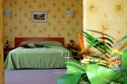 Нощувка на човек със закуска в парк хотел Дряново, гр. Дряново, снимка 6
