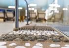 Нощувка на човек със закуска + басейни и обновен СПА център в Гранд хотел Поморие*****, на 1-ва линия в Поморие, снимка 8