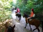 """1 или 2 часа конна езда от Конна База """"Св. Иван Рилски"""", с. Владая, до София, снимка 5"""