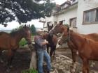"""1 или 2 часа конна езда от Конна База """"Св. Иван Рилски"""", с. Владая, до София, снимка 10"""