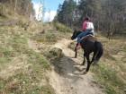 """1 или 2 часа конна езда от Конна База """"Св. Иван Рилски"""", с. Владая, до София, снимка 13"""