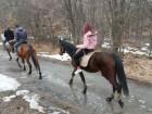 """1 или 2 часа конна езда от Конна База """"Св. Иван Рилски"""", с. Владая, до София, снимка 14"""