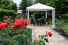 Нощувка на човек на база All Inclusive + басейн от хотел Белица, Приморско, снимка 3