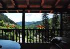 Нощувка на човек със закуска, обяд* и вечеря + басейн в Семеен хотел Илинден, Шипково до Троян., снимка 3