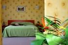 Нощувка на човек със закуска и вечеря + басейн, шезлонг и чадър от парк хотел Дряново, снимка 6