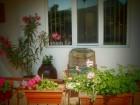 Нощувка за 4, 8 или 12 човека + басейн, барбекю и много удобства в къщи Извора в с. Господинци край Банско, снимка 11