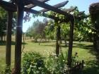 Нощувка за до 10 човека + механа и басейн в самостоятелна къща Равеста в Еленския Балкан - с. Руховци, снимка 16
