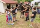 Детски рожден ден за 10 или 15 деца с конна езда и игри до 4 часа от Планинска конна база Своге, снимка 2