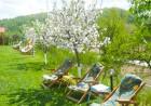 Нощувка на човек + басейн в хотел Зенит, с. Сатовча, край Доспат, снимка 11