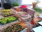 Нощувка със закуска за ДВАМА + външен и вътрешен басейн с гореща минерална вода и сауна от хотел Виталис, Пчелински бани, до Костенец, снимка 8